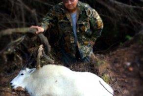 Kitsumkalum Community Member Hunter - Annual harvest