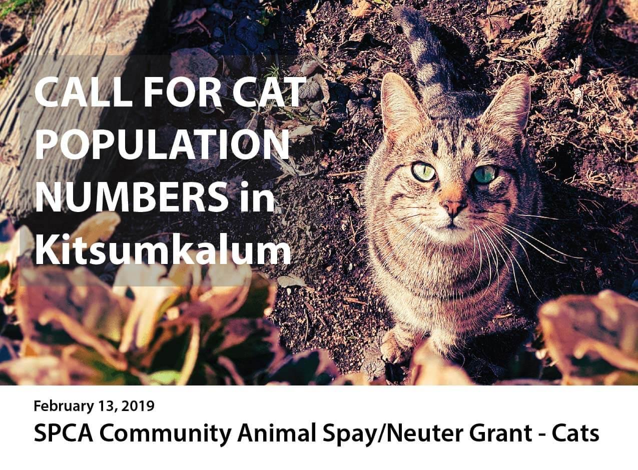 Kitsumkalum Cat Population Survey