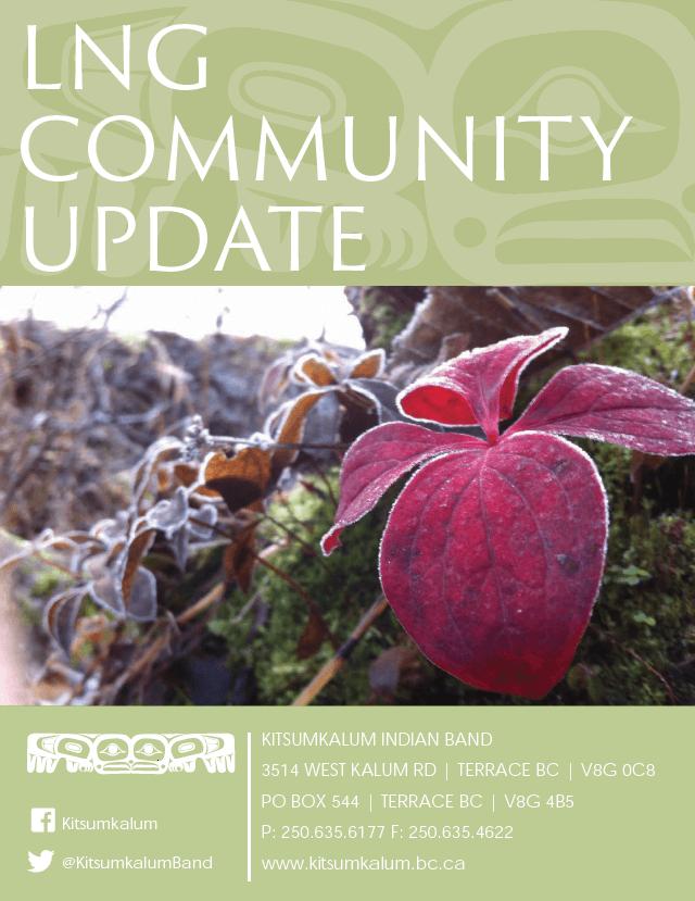 LNG Community Update 2015/16