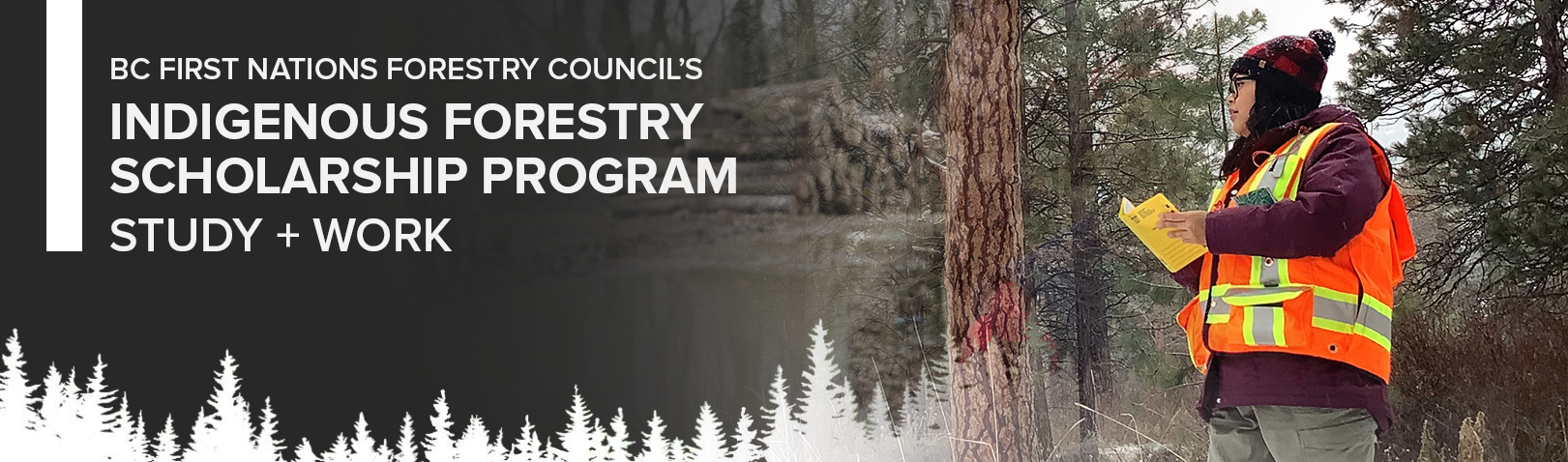 Indigenous Forestry Scholarship Program – Scholarship Training Opportunity